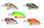 Mini 3.6 cm Crankbait Set in Box 5 Lures