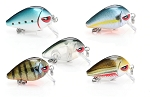 5pcs Mini Crankbait Fishing Lure Set 2.8cm 1.6g